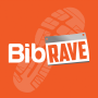 Artwork for #122: The BibRave 100 revealed & Team BibRave heads to Hawaii!