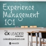 Artwork for Experience Management 101, Part 1