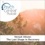 Artwork for Sexual Abuse: The Last Stage in Recovery