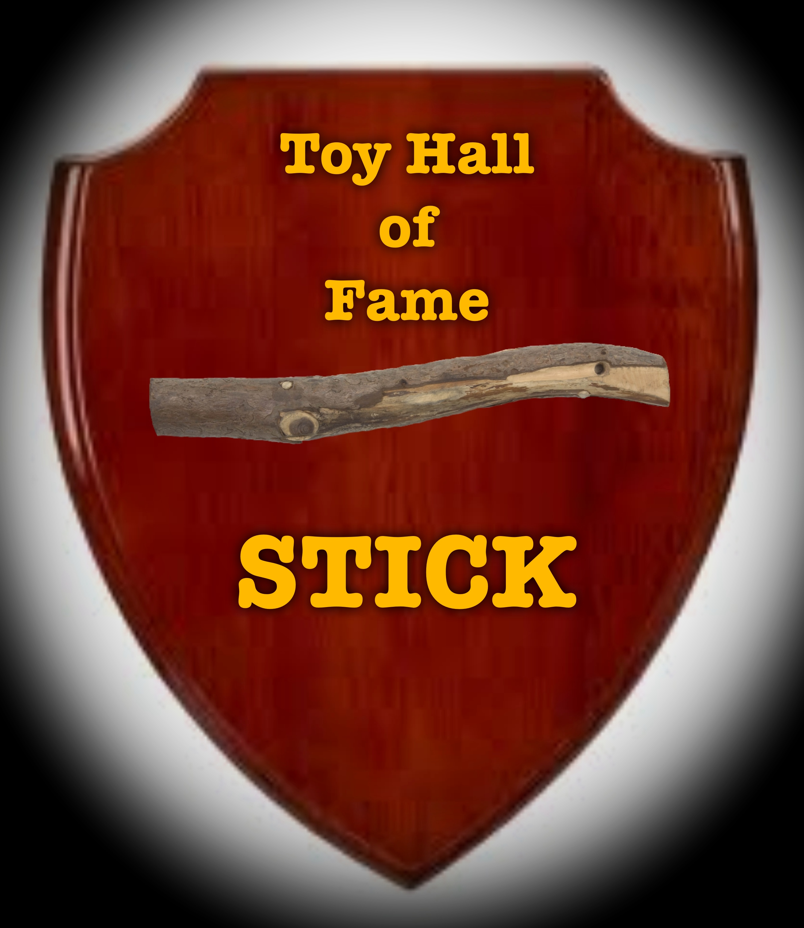 21-Toy Hall of Fame