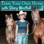 Artwork for Episode 122: Feeling overwhelmed while training your own horse.
