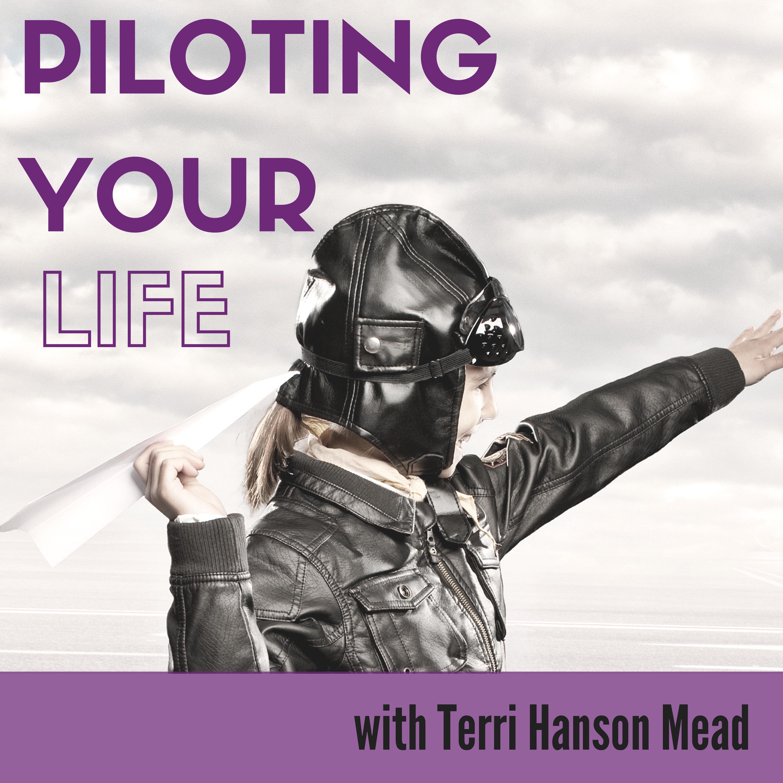 Piloting your Life show art
