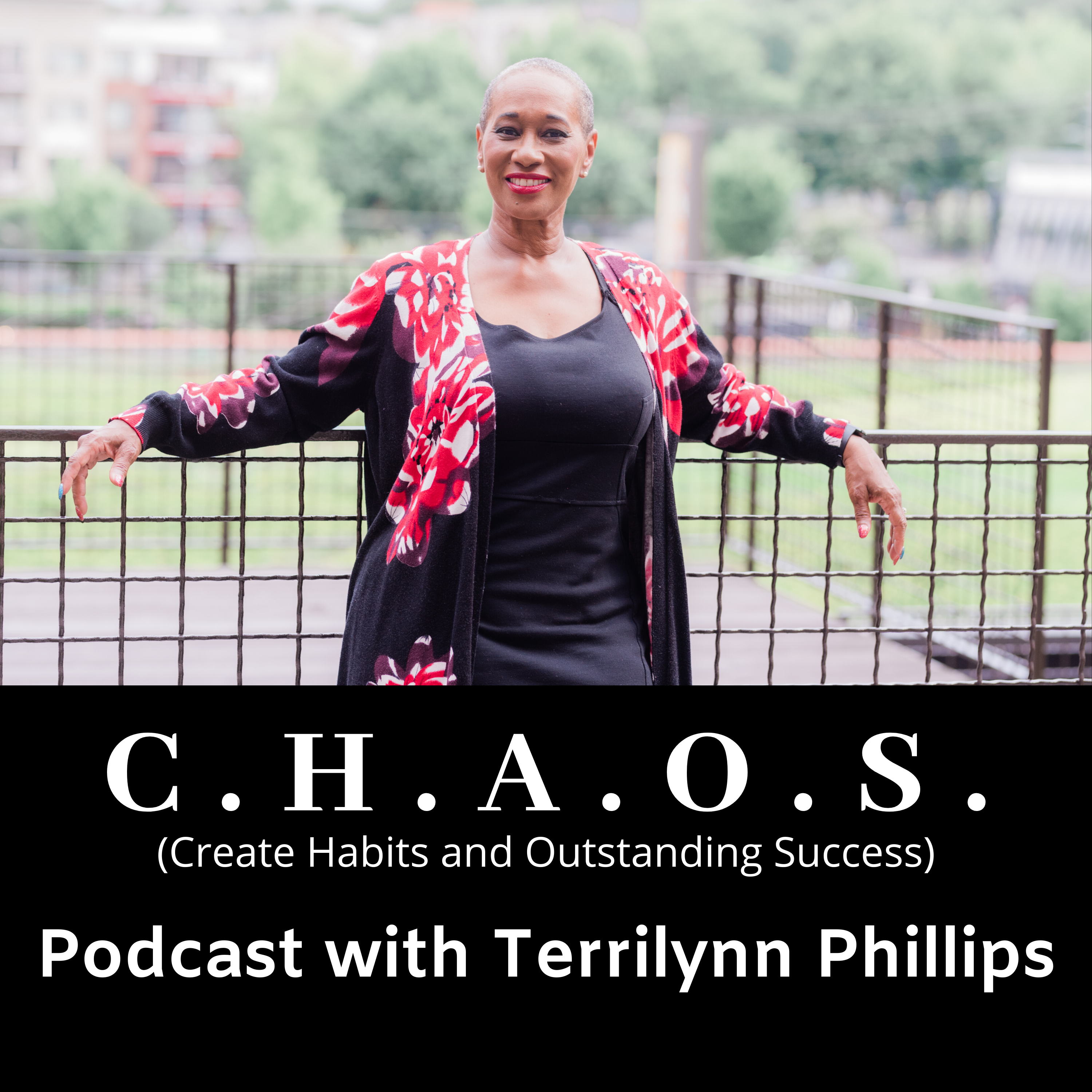 C.H.A.O.S. -  Create Habits and Outstanding Success show art