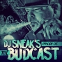 Artwork for DJ Sneak | The Budcast | Episode 5