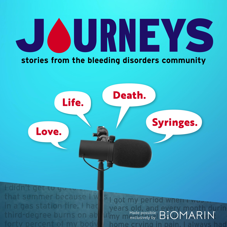 BloodStream Journeys show art