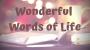 Artwork for Wonderful Words of Life