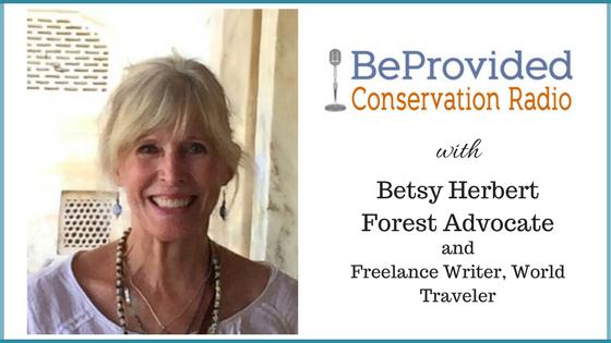 Betsy Herbert