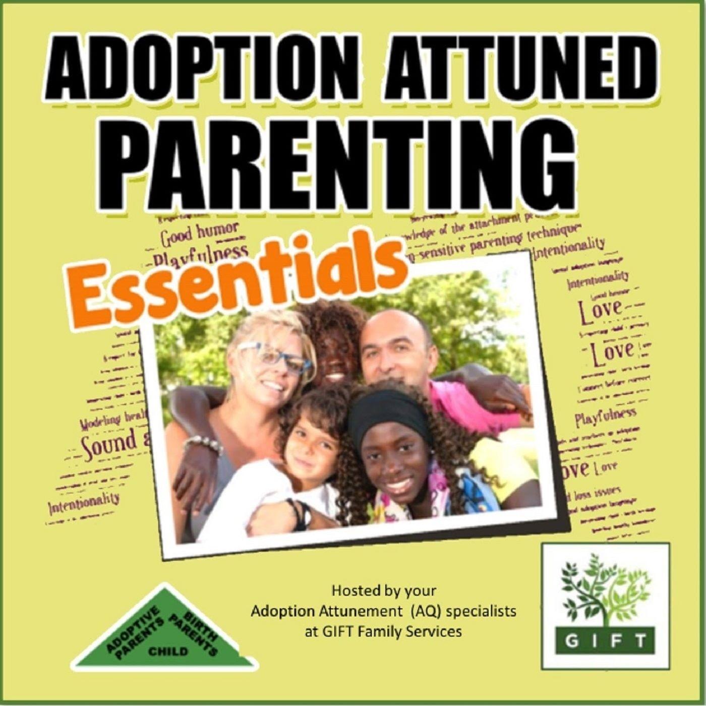 The Essentials for Adoption Attuned Parenting show art