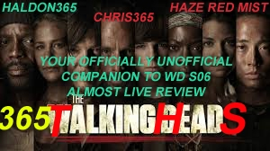 365Flicks #31 Talking Heads The Officially Unofficial Walking Dead Companion S06E11 (Spoilers Duh)