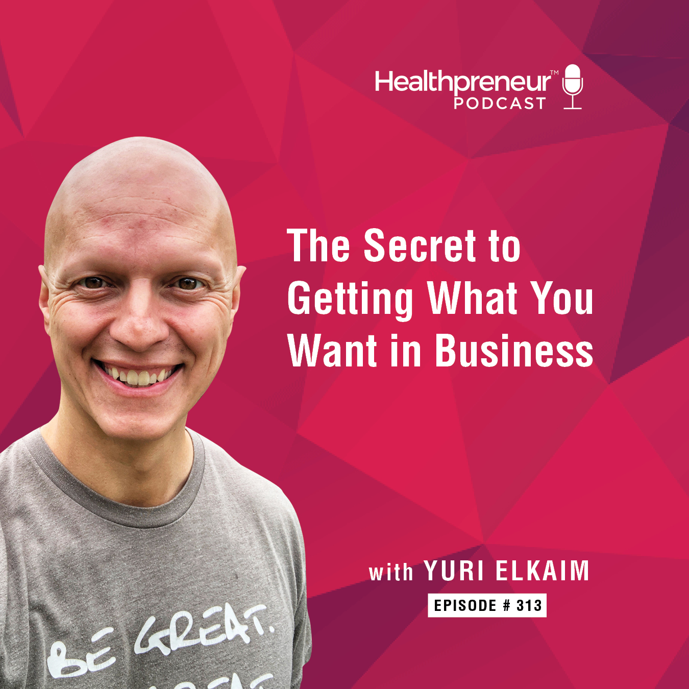 313 - The Secret to Getting What You Want in Business show art
