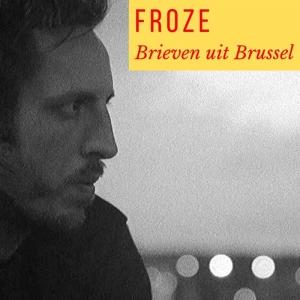 Brieven uit Brussel