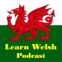 Artwork for  Week 3: Beginner's Welsh - Poeni/Worry and Worried