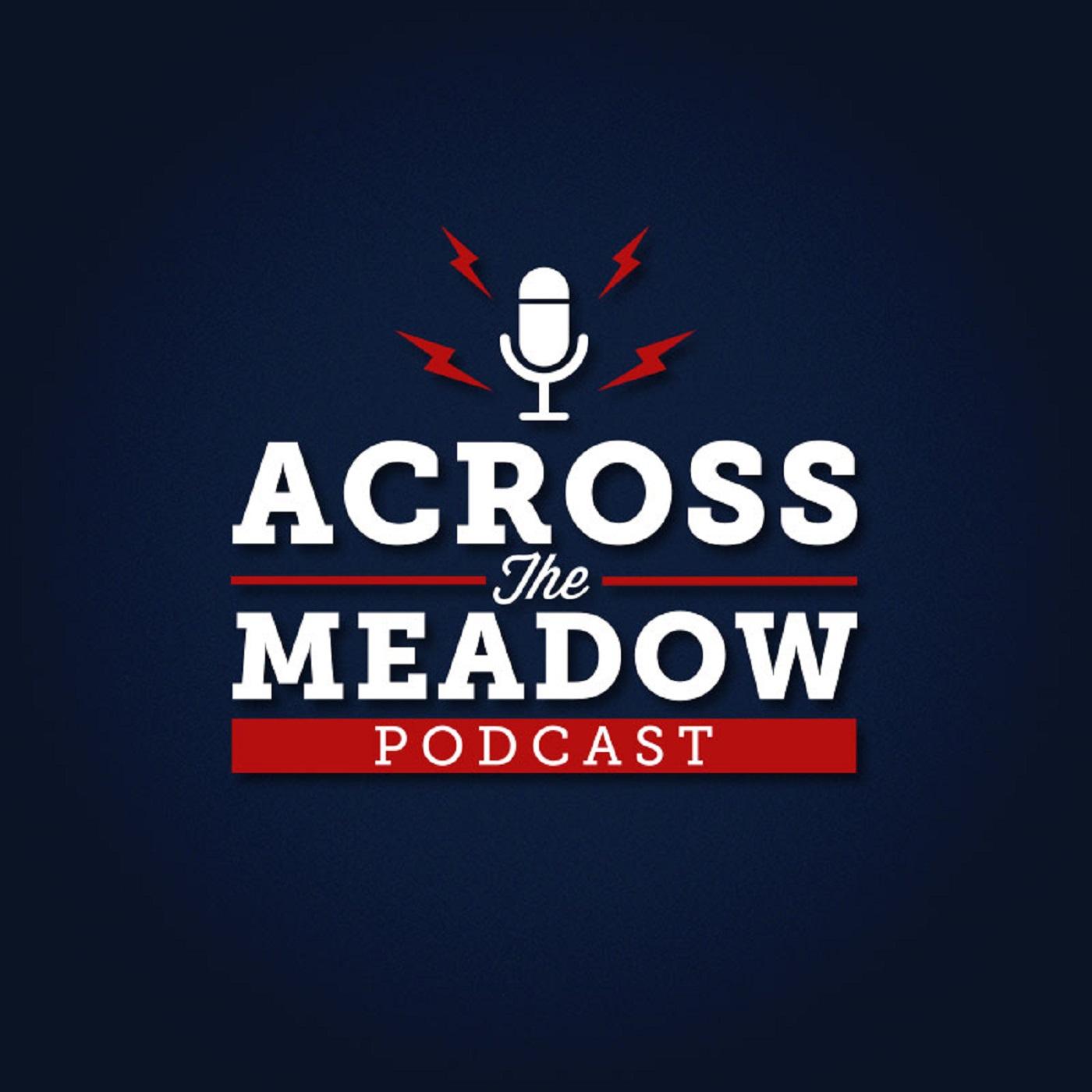 acrossthemeadow's podcast show art