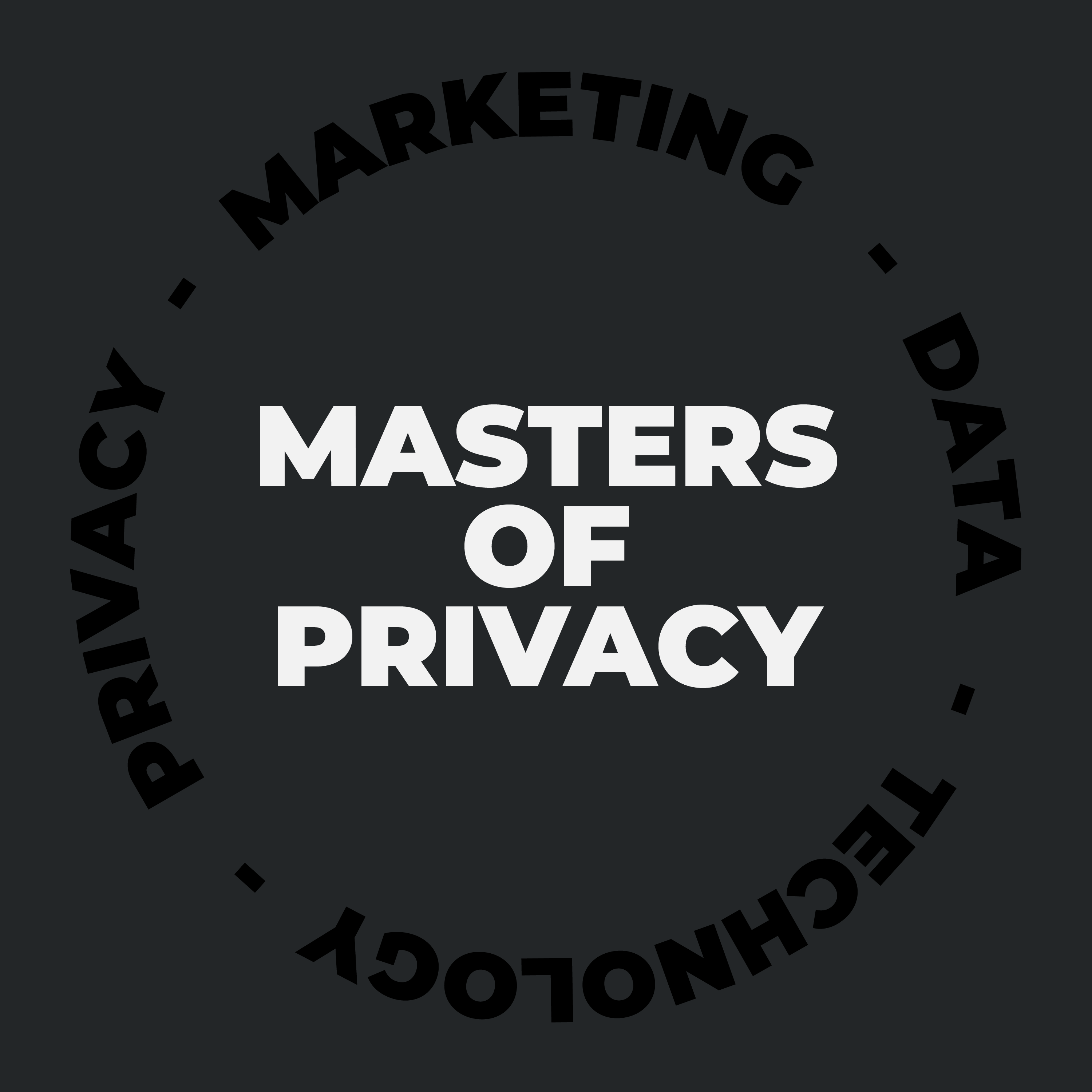 Masters of Privacy (ES) show art