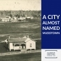 Artwork for 54: The Alabama city almost named Muddtown