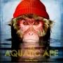 Artwork for The Aquatic Ape Theory, aka Wet Monkeys.