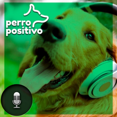 Perro Positivo show image