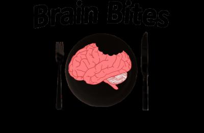 ASCEND Brain Bites show image