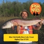 Artwork for Blue Fish Radio Show Lake Trout Jigging Tips EP 218