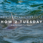 Artwork for HOW 2 TUESDAY #53 - How To Chum For Sharks