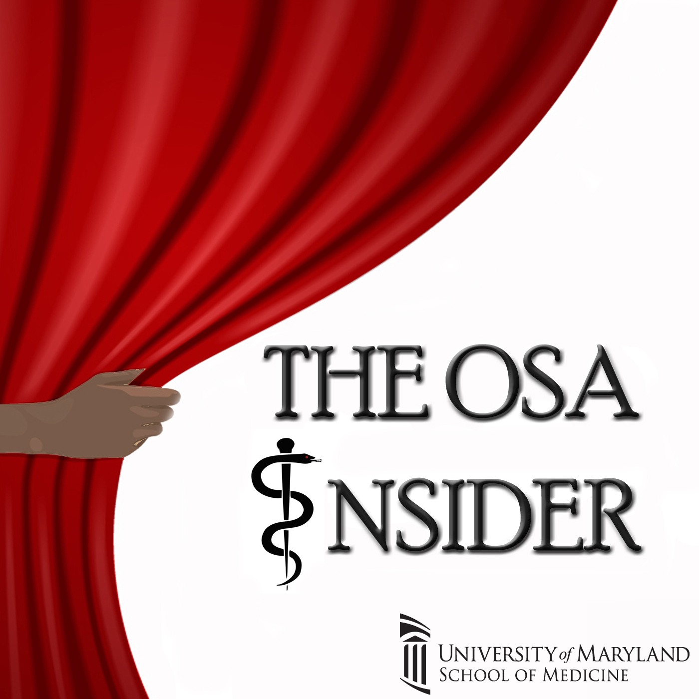 The OSA Insider show art