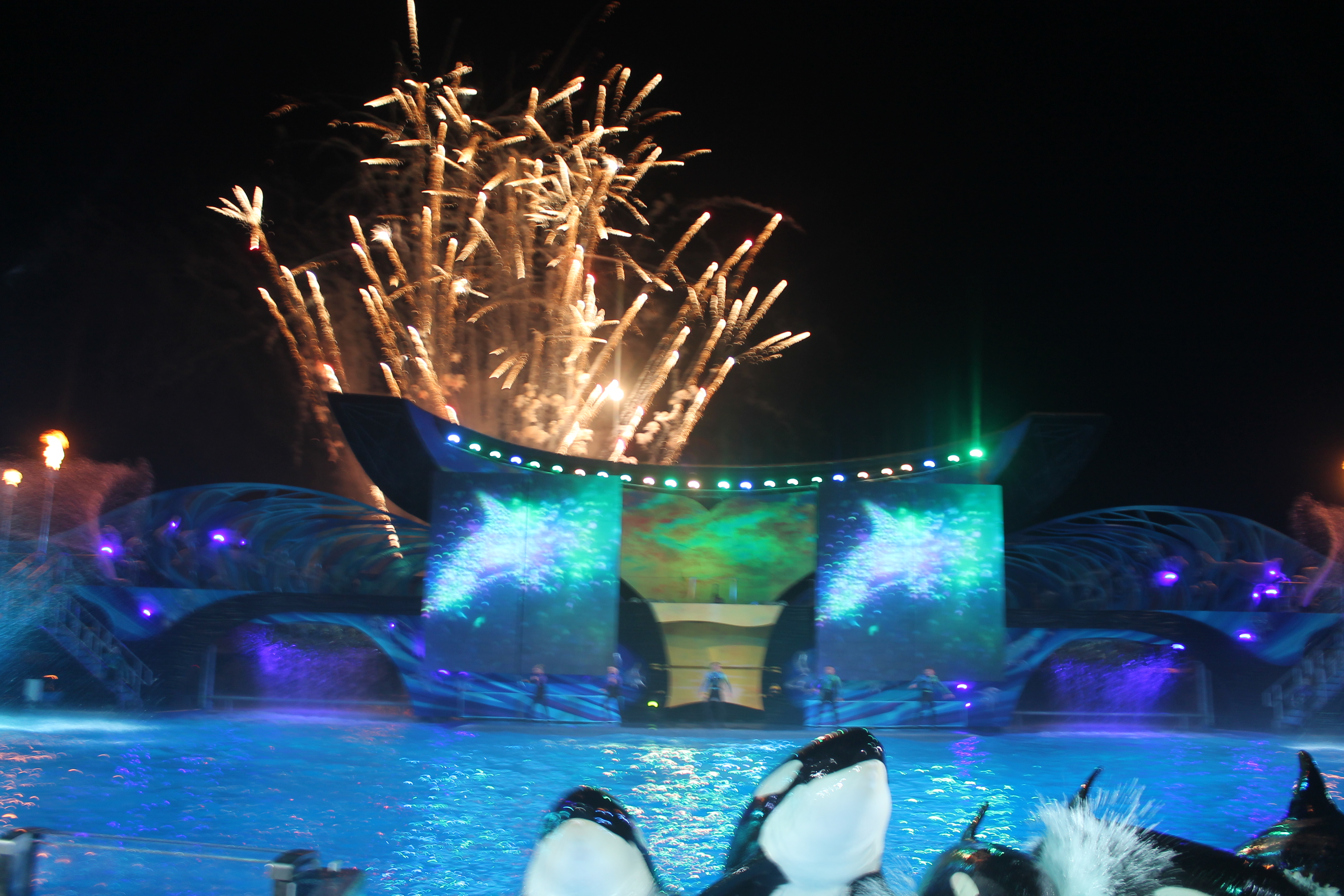 SeaWorld Podcast 27 - 4th of July at SeaWorld - Chris Bellows talks Belugas and more