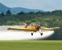 Artwork for MSM 531 Stanley Ferguson - Delta Crop-Duster