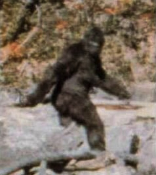 Episode 113 Bigfoot & Close Encounters with Creepy Things