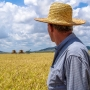 Artwork for Australian and South American Grains Farmers Finding Common Ground