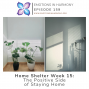 Artwork for Home Shelter Week 15: The Positive Side of Staying Home