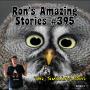 Artwork for RAS #395 - The Smiling Owl
