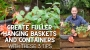 Artwork for 3 Tips to Create Fuller Hanging Baskets and Containers - DIY Garden Minute Ep.200