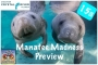 Artwork for Episode 15a: Manatee Madness in Crystal River Preview
