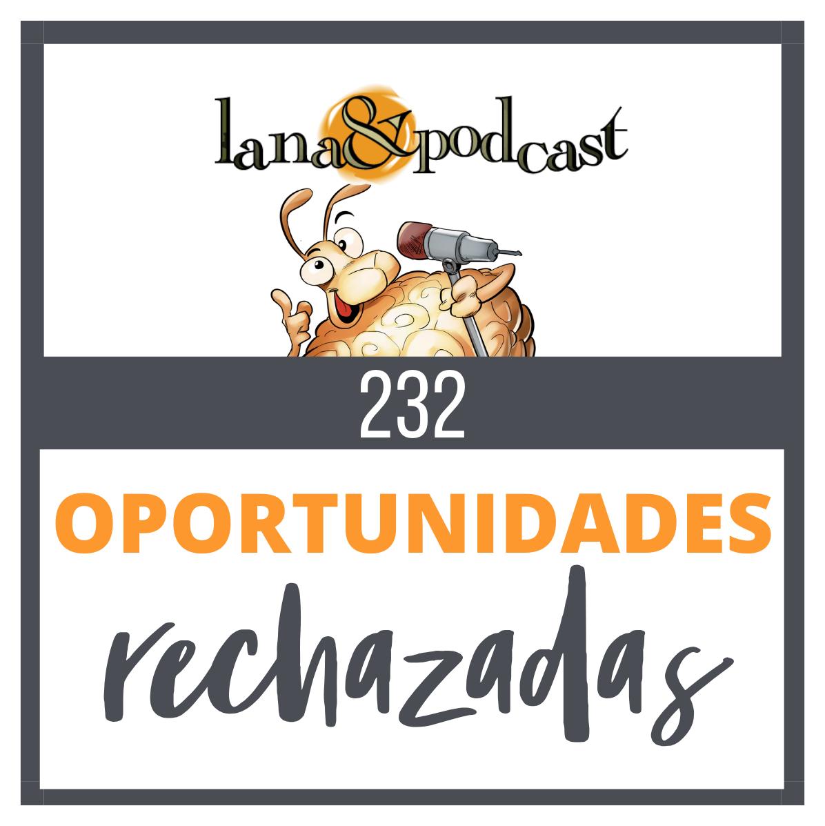 Oportunidades rechazadas #232