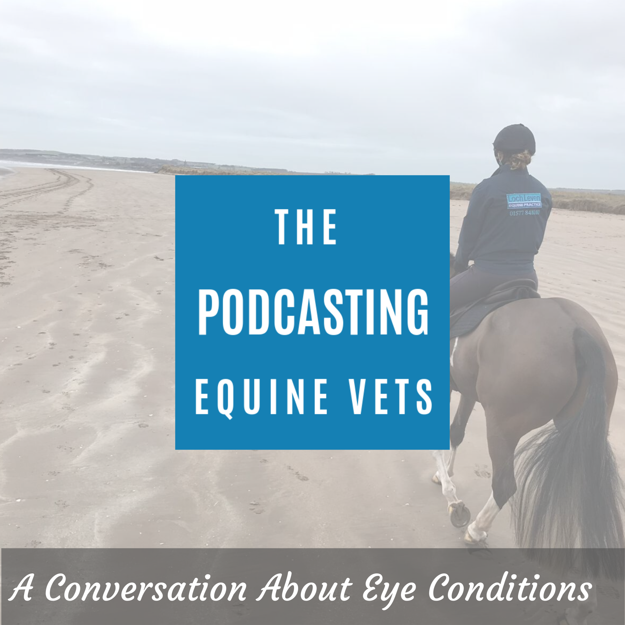 A Conversation About Eye Conditions
