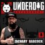 Artwork for EP: 074 - David Meltzer - Evolve Your Underdog Mentality