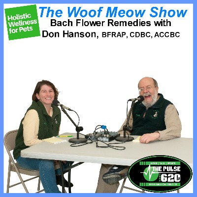 Holistic and Complementary Wellness for Pets - Bach Flowers for Pets with Don Hanson