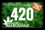 Artwork for The 411 on 420: Medical Cannabis Update - Pharmacy Podcast Episode 420
