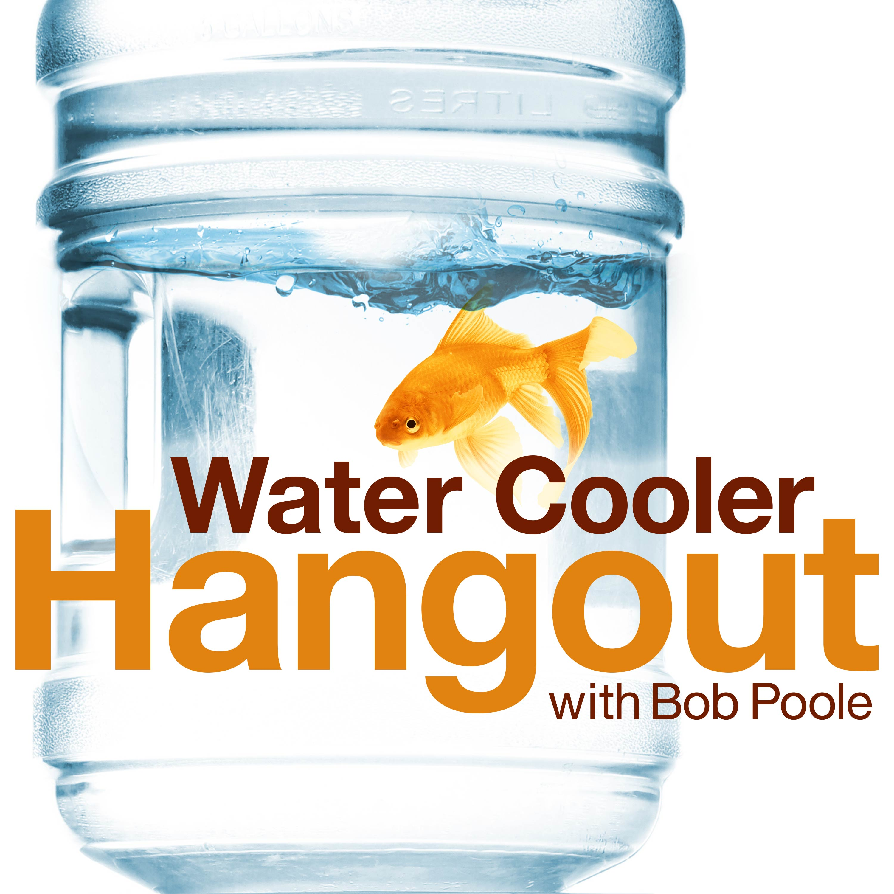 The Water Cooler Hangout with Bob Poole show art