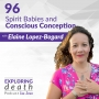 Artwork for Spirit Babies and Conscious Conception with Elaine Lopez-Bogard - Episode 96