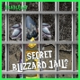 Artwork for FC 101: You'll Never BELIEVE Where The Secret Blizzard Jail Is!