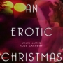Artwork for An Erotic Christmas by Rose Caraway and Malin James