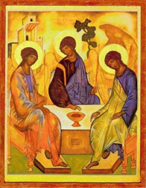 Homily - 16th Sunday in Ordinary Time -