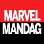 Artwork for Ep. 17 - Netflix Til Marvel
