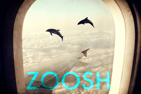 Episode Ninety Five - Zoosh