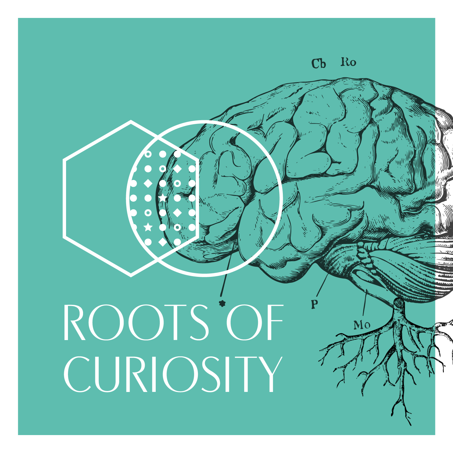 Roots of Curiosity: Neuroscientists in a Science-Art Project [ENG]