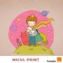Artwork for Micul Prinț