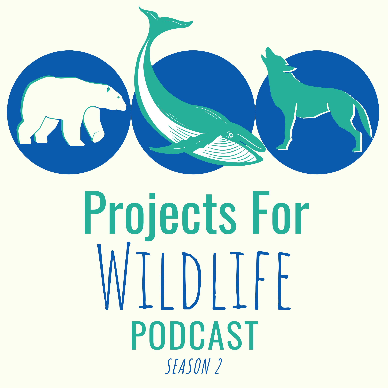 Lynette Plenderleith shares her love for frogs and saving their habitat