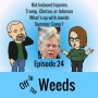 Artwork for Kid Induced Injuries, Trump, Clinton, or Johnson, & What's up with Jewish Summer Camp? | Off in The Weeds 024