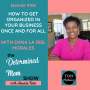 Artwork for #108: How to Get Organized in Your Business Once and For All with Dana La Riel Morales